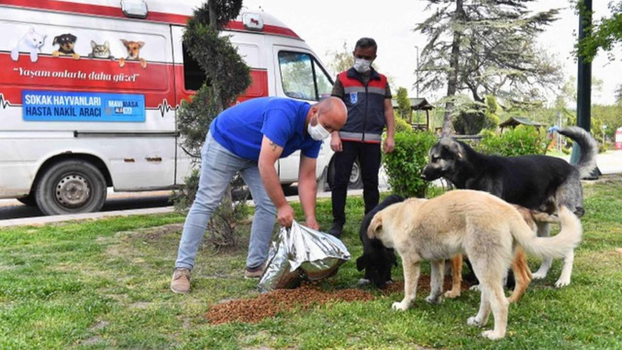 Ankara Büyükşehir Belediyesi tam kapanmada onları da unutmadı
