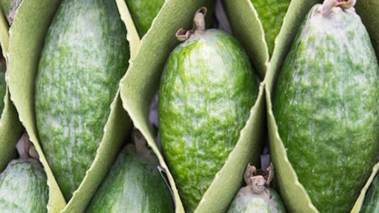 'Feijoa' meyvesi bir ülkeyi ikiye böldü