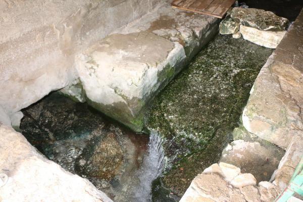Caminin altından akan suda serinliyorlar - Resim: 3