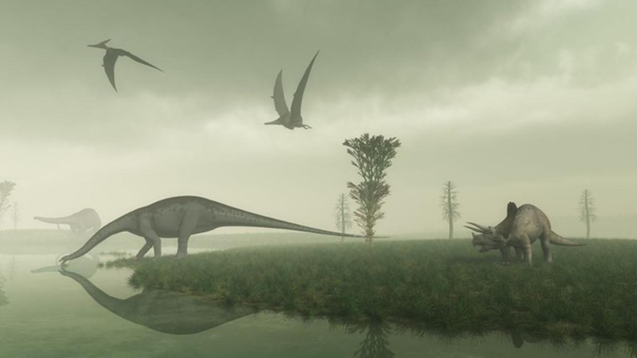 Olağanüstü gece görüşüne sahip dinozor türü keşfedildi!