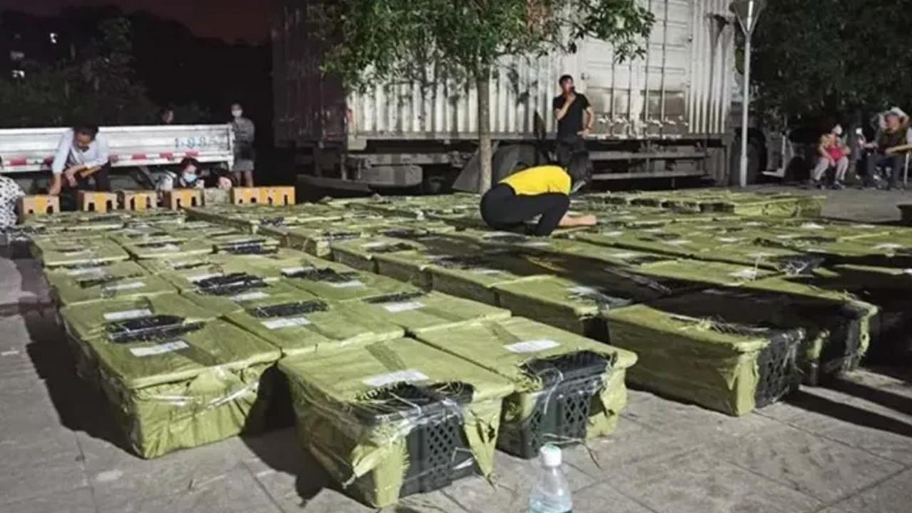 Çin'de kapalı kutularda canlı hayvan satışına büyük tepki!