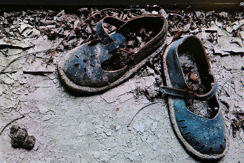 Çernobil'de nükleer kabus geri döndü - Resim: 4