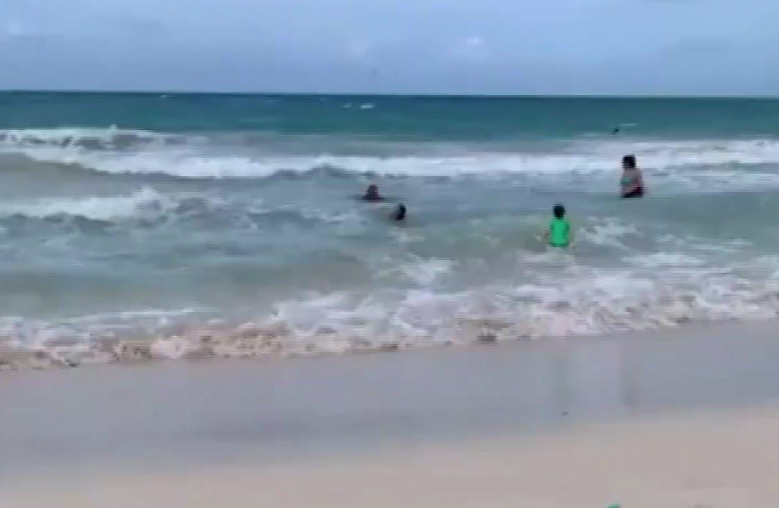 Denizde inanılmaz anlar; köpekbalığını son anda fark etti