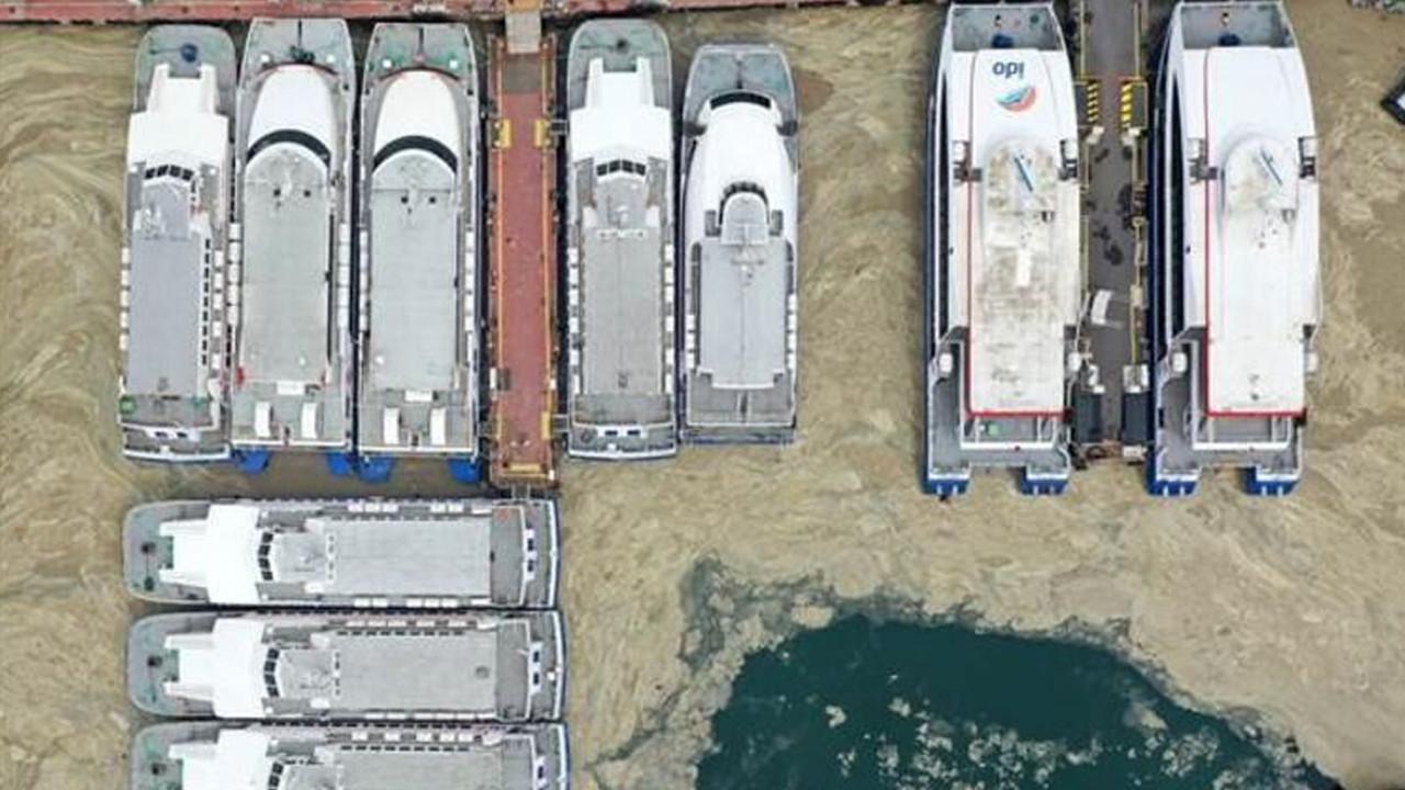 Marmara'da deniz salyasına karşı harekete geçildi