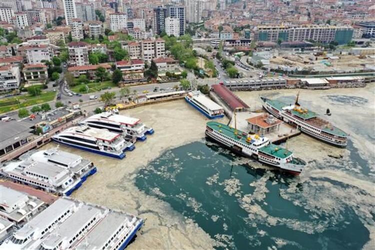 Marmara'da deniz salyasına karşı harekete geçildi - Resim: 1