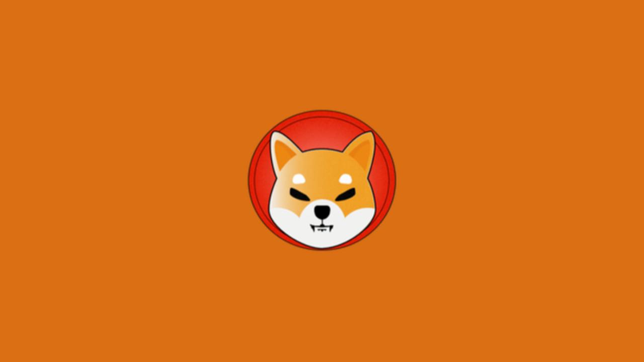 DogeCoin sonrası şimdi de SHIB çılgınlığı yaşanıyor