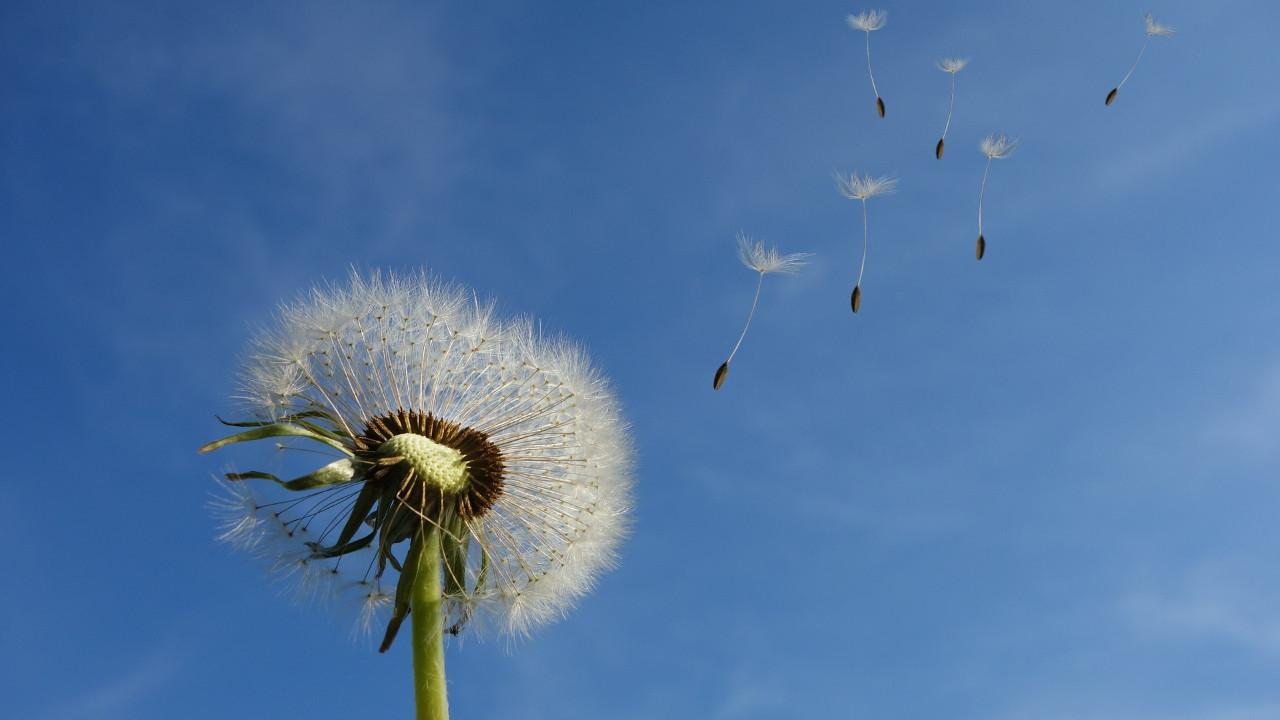 Meteoroloji'den kritik uyarı; bayramda hava nasıl olacak ?