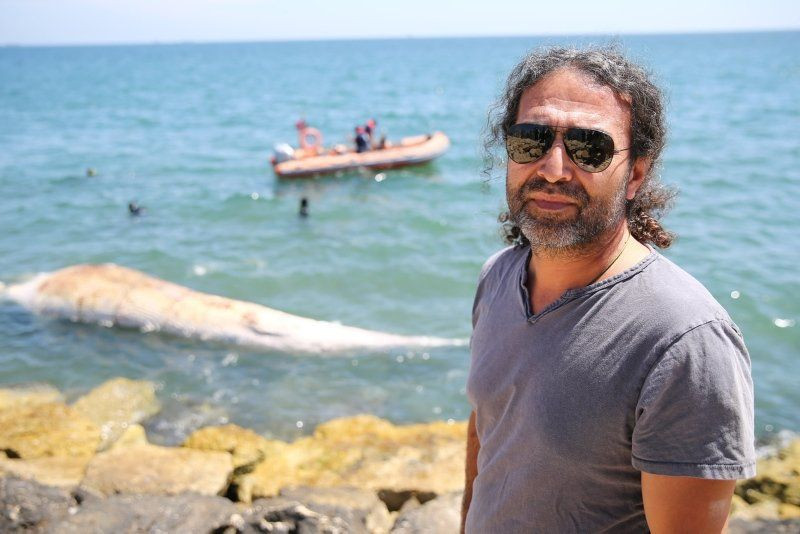 Dev balina Mersin'de sahile vurdu - Resim: 1