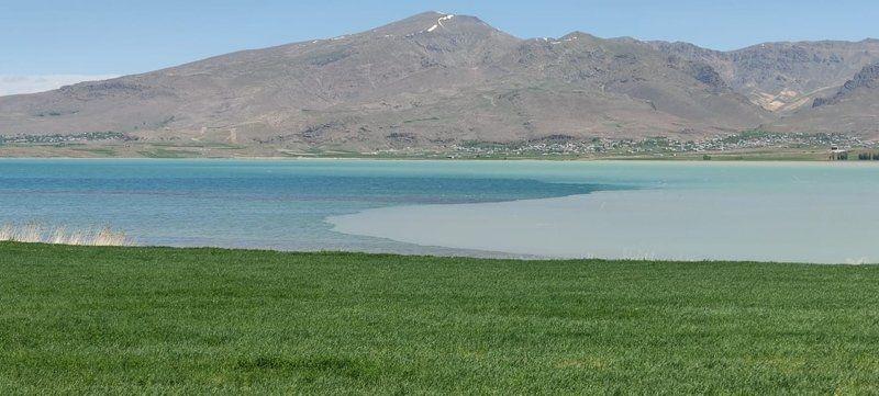 Van Gölü'nde şaşırtan görüntü - Resim: 4