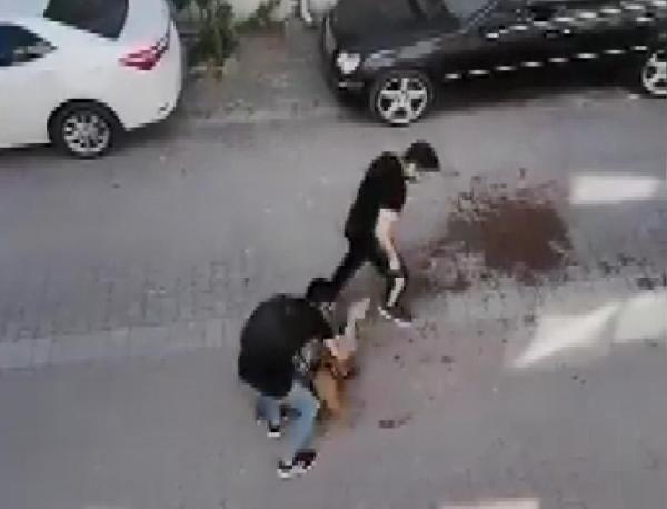 Pitbull cinsi köpek kediyi böyle parçaladı - Resim: 2