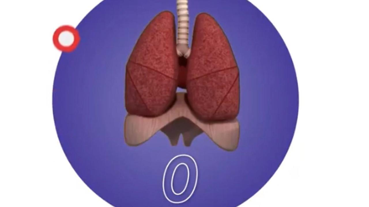Sosyal medyada hızla yayılmıştı: Akciğer testi aldatmaca mı?