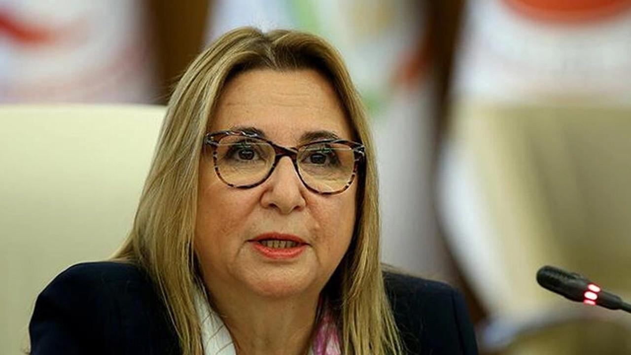 CHP, Ruhsar Pekcan için Meclis soruşturma komisyonu kurulmasını istedi