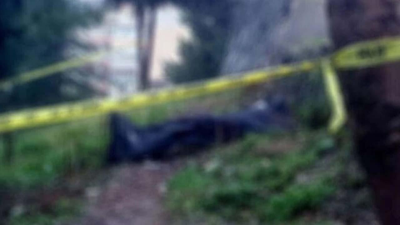 Korkunç olay: Eski polisin bahçesinden 14 ceset çıktı