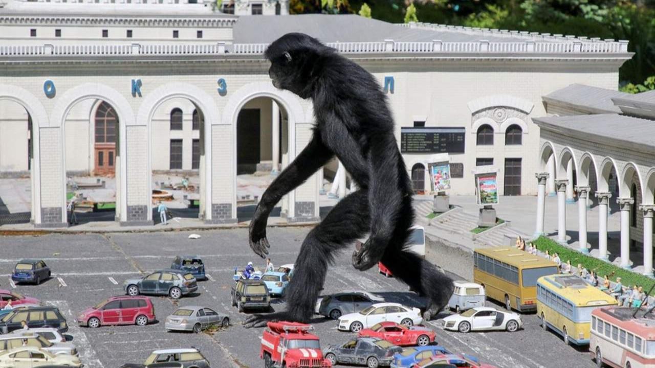 King Kong filmi gerçek oldu... Turizm için inanılmaz kampanya