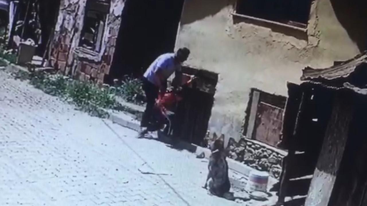 Ellerin kırılsın! 8 yaşındaki engelli çocuğu köpeklerin önüne böyle attı