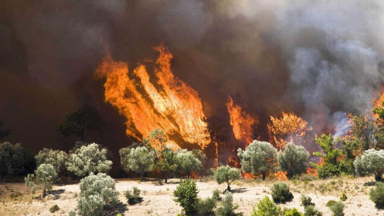 Korkulan oldu: Türkiye'nin turizm cennetinde yangın sezonu açıldı