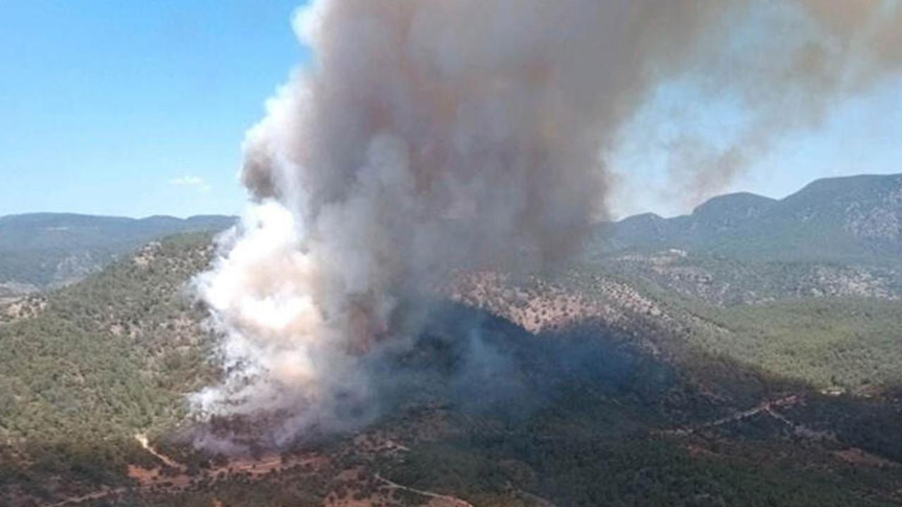 Muğla'da yangın sezonu açıldı: Havadan karadan müdahale ediliyor