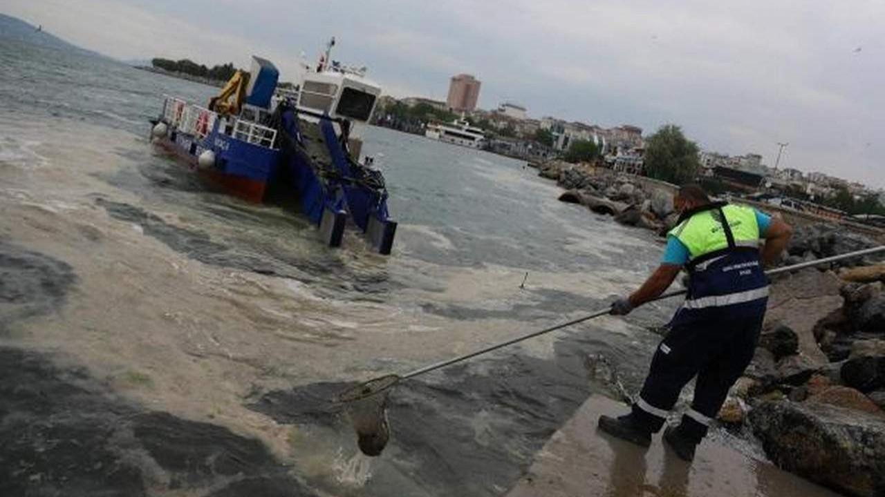 İstanbul Büyükşehir ve Kartal Belediyeleri İstanbul'da deniz salyası temizliği başlattı