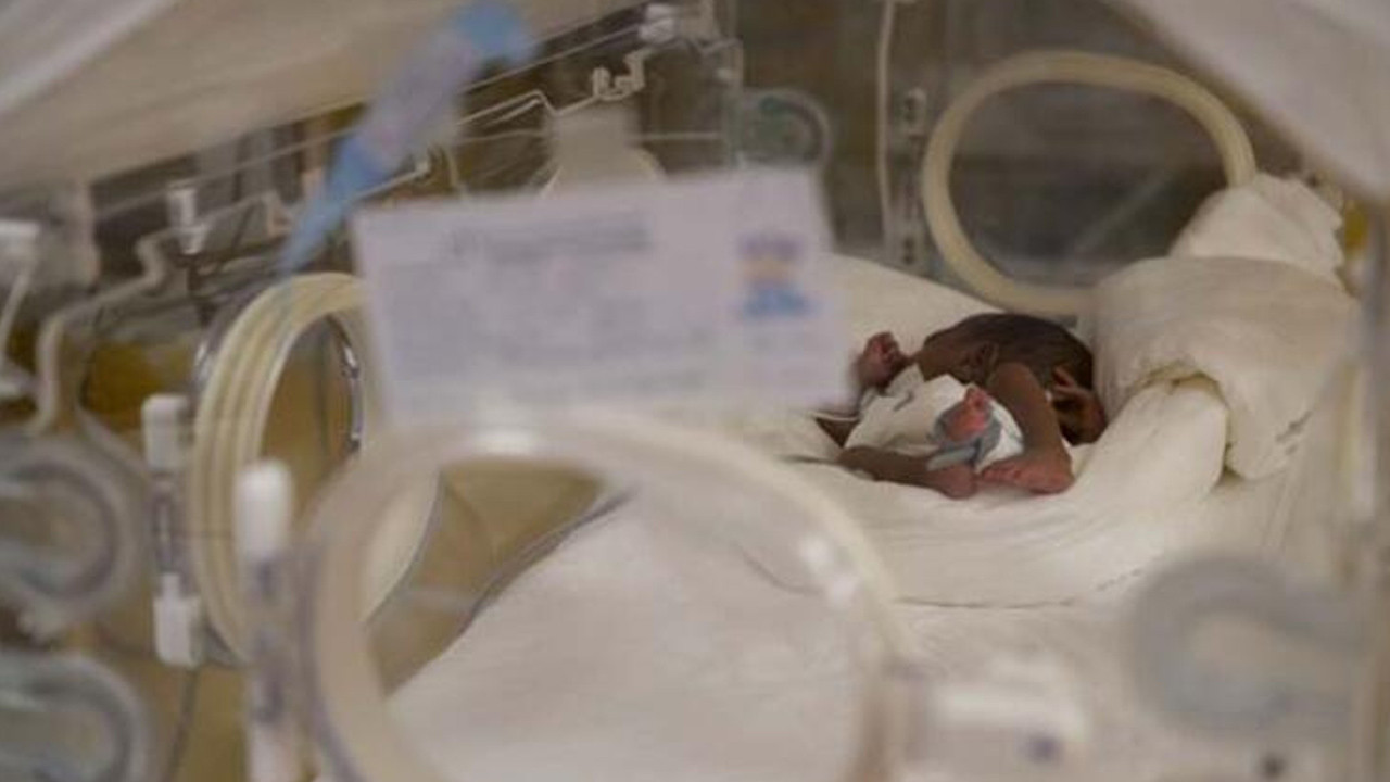 Mucize gibi olay: 7 bebek beklerken 9 tane doğurdu