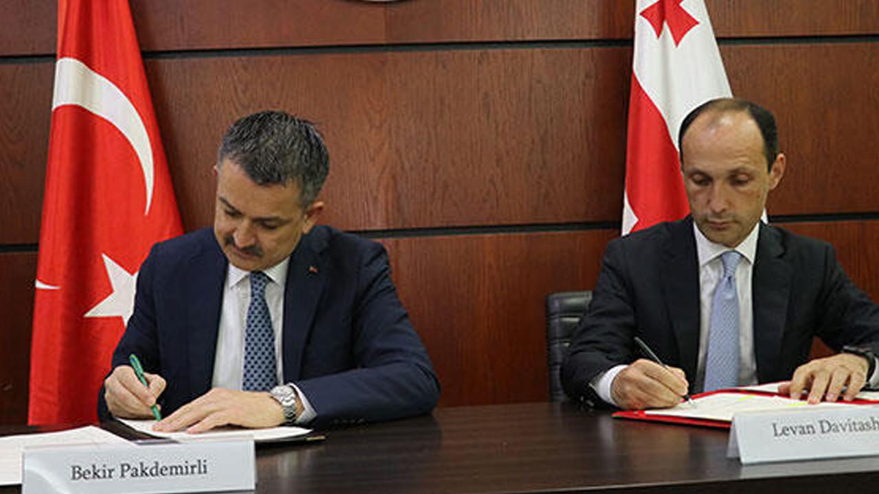 İmzalat atıldı: Türkiye ile Gürcistan arasında iş birliği