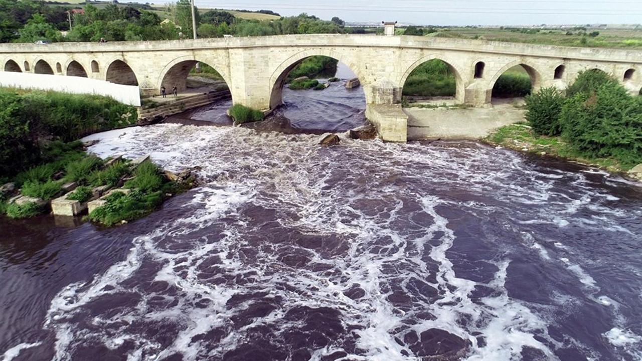Ergene Nehri, Trakya'da zehir saçıyor