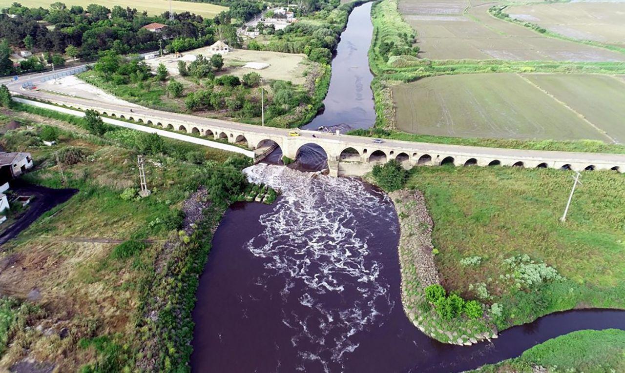 Ergene Nehri, Trakya'da zehir saçıyor - Resim: 3