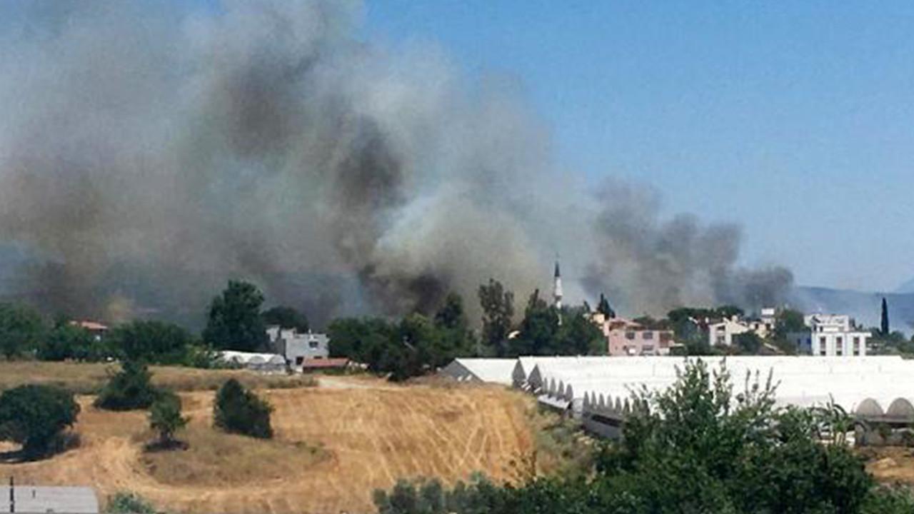 Antalya'da 3 noktada orman yangını