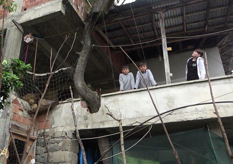 Babasının diktiği ağacı kesmeye kıyamadı; balkonun içerisinden geçirdi