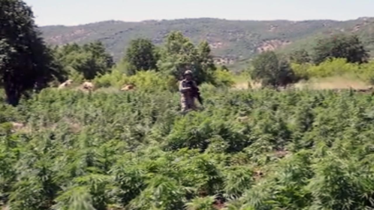 Diyarbakır'da PKK'nın finans kaynağına ağır darbe