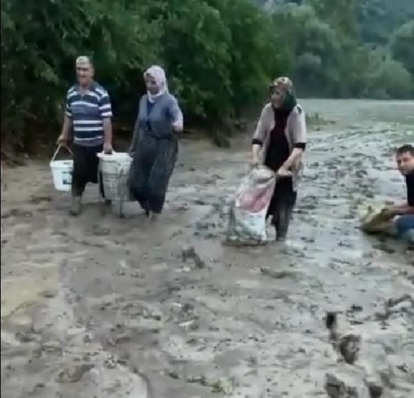 Adana'da ilginç anlar... Tarladan kova kova balık topladılar - Resim: 1