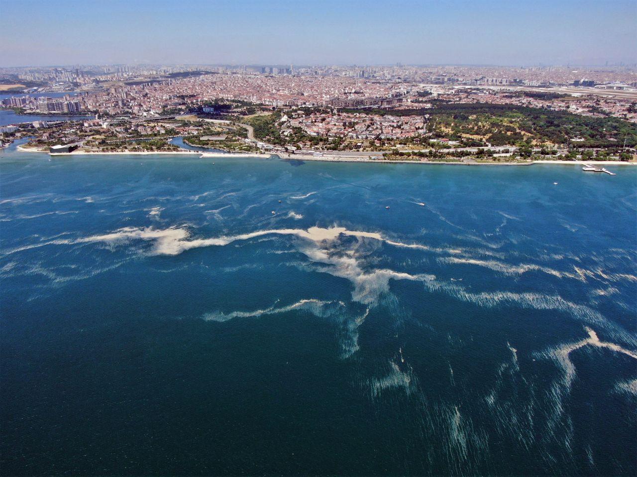 İstanbul sahillerinde son durum: Kilometrelerce müsilaj hattı oluştu - Resim: 4