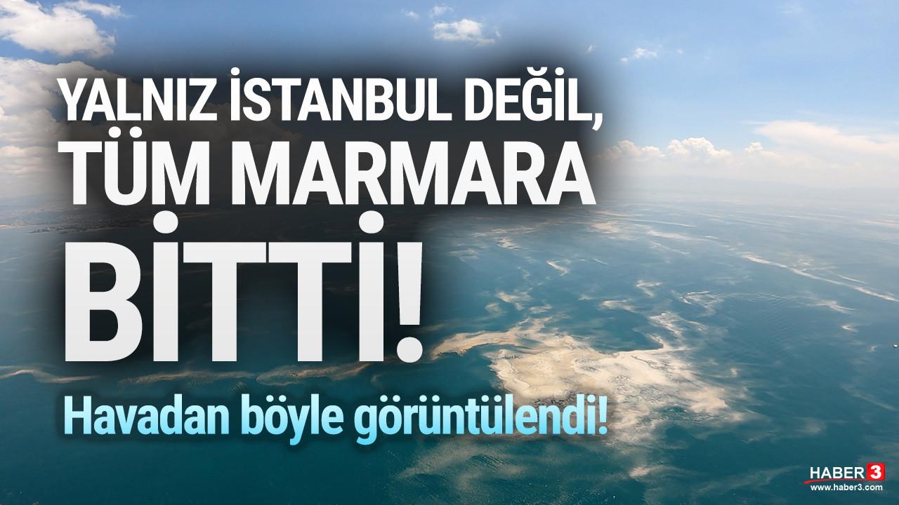 Marmara Denizi'ndeki mide bulandıran müsilaj havadan görüntülendi