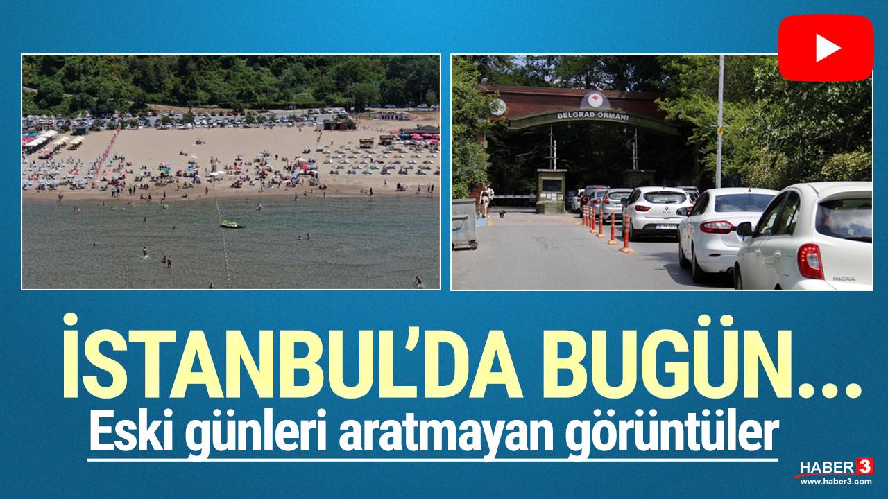 Kimi ormana, kimi plaja... İstanbullu kendini dışarı attı