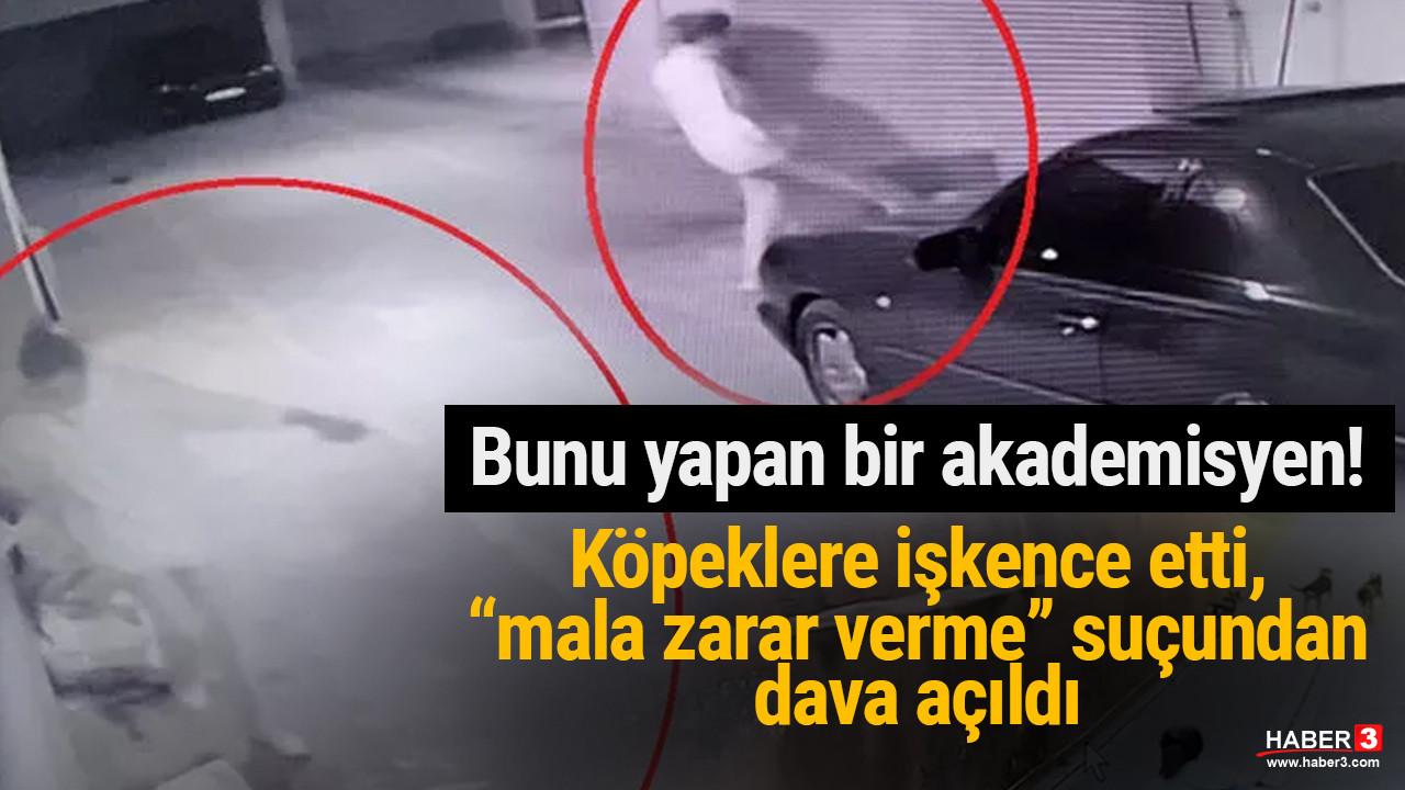 Ankara'da köpeklere işkence eden akademisyene dava