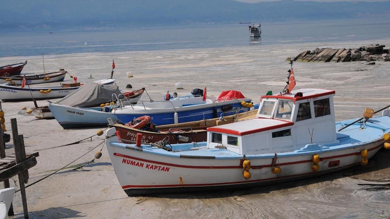 Müsilajlı denizden balık ve midye yenir mi? Bakanlık analiz sonuçlarını açıkladı