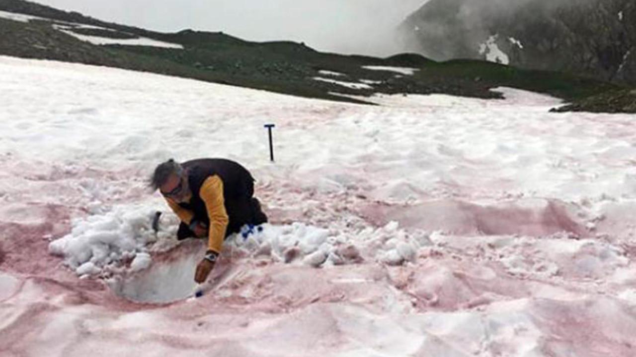 Bu sefer de kırmızı kar yağdı! Bilim insanları harekete geçti...