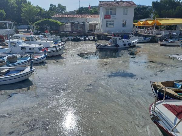Müsilajda korkulan oldu! Ege'nin cennet adası Bozcaada'da da görüldü - Resim: 3