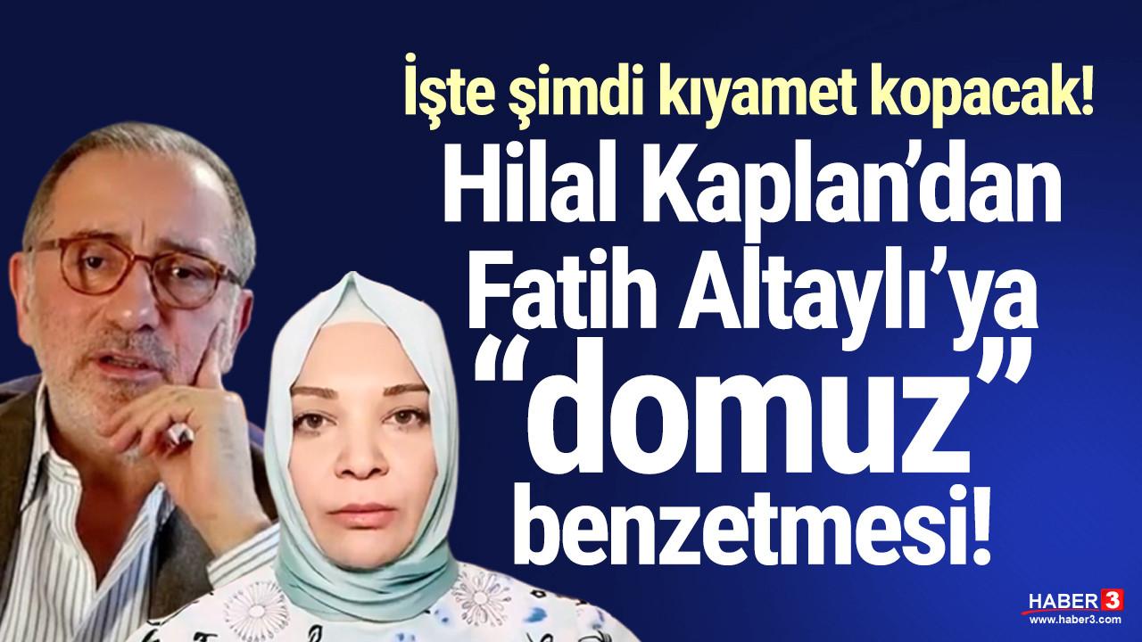 Hilal Kaplan'dan Fatih Altaylı'ya ''domuz'' benzetmesi