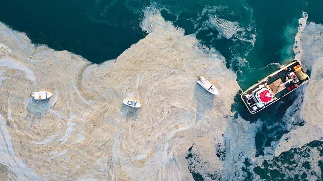 Müsilajlı denize girilir mi? Canlı yayında korkutan sözler