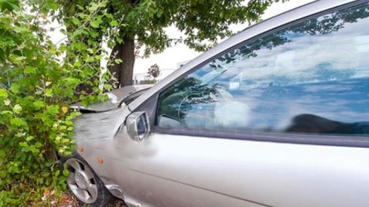 Otomobil ağaca çarpınca rezalet ortaya çıktı