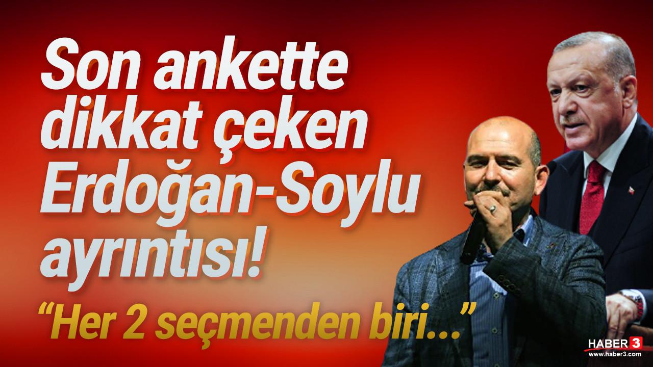 Son ankette AK Parti'ye soğuk duş etkisi: Ya görevden alınsın, ya da istifa etsin!