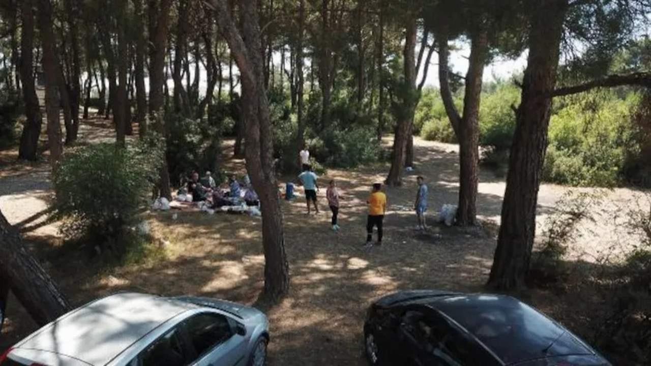 İzmir'de ormanlara 2,5 aylık piknik yasağı