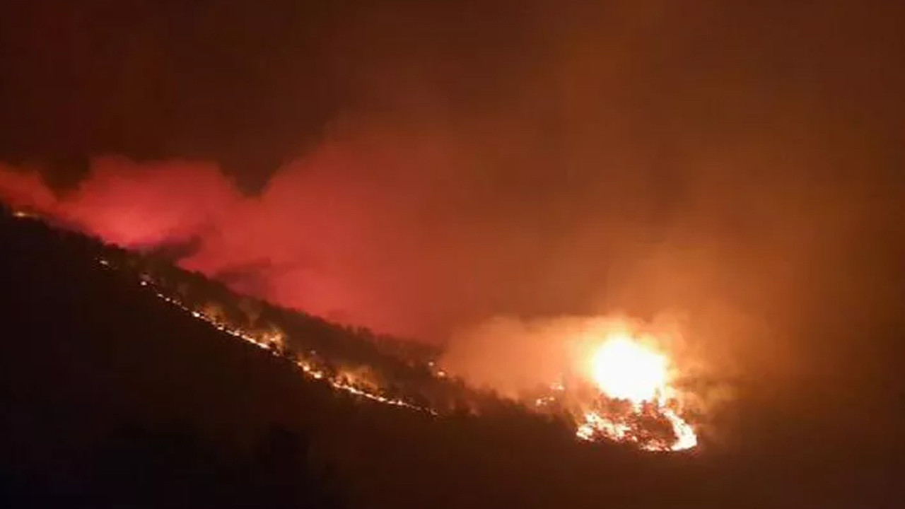 Hatay'da iki ayrı noktada orman yangını