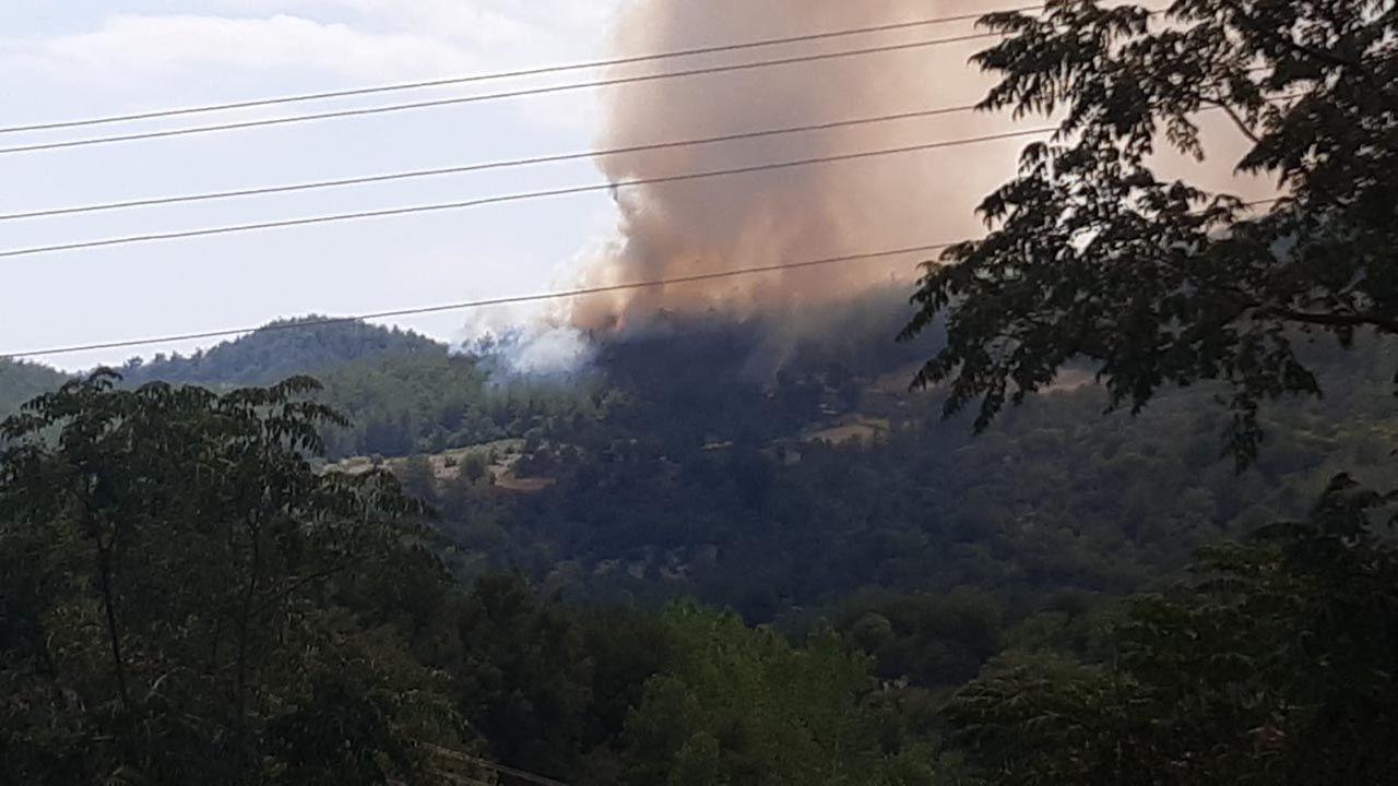 Osmaniye'de büyük orman yangını - Resim: 1