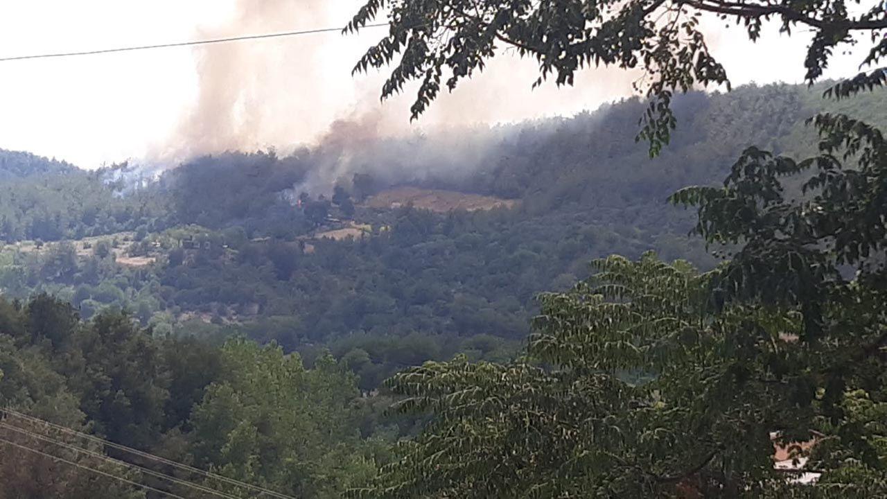 Osmaniye'de büyük orman yangını - Resim: 3