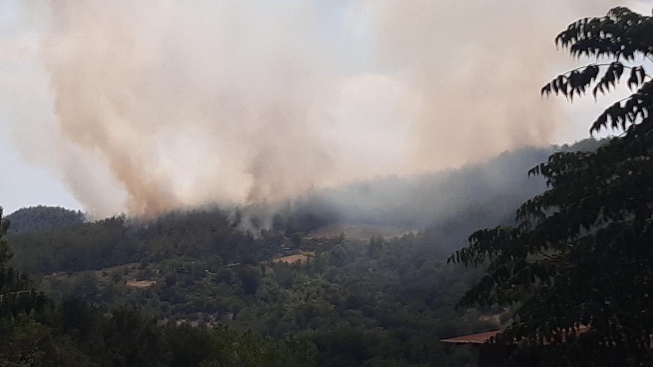 Osmaniye'de büyük orman yangını - Resim: 4