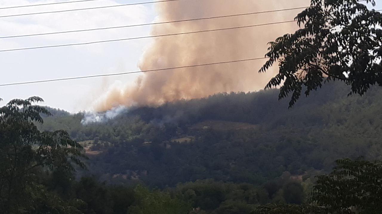 Osmaniye'de büyük orman yangını - Resim: 2