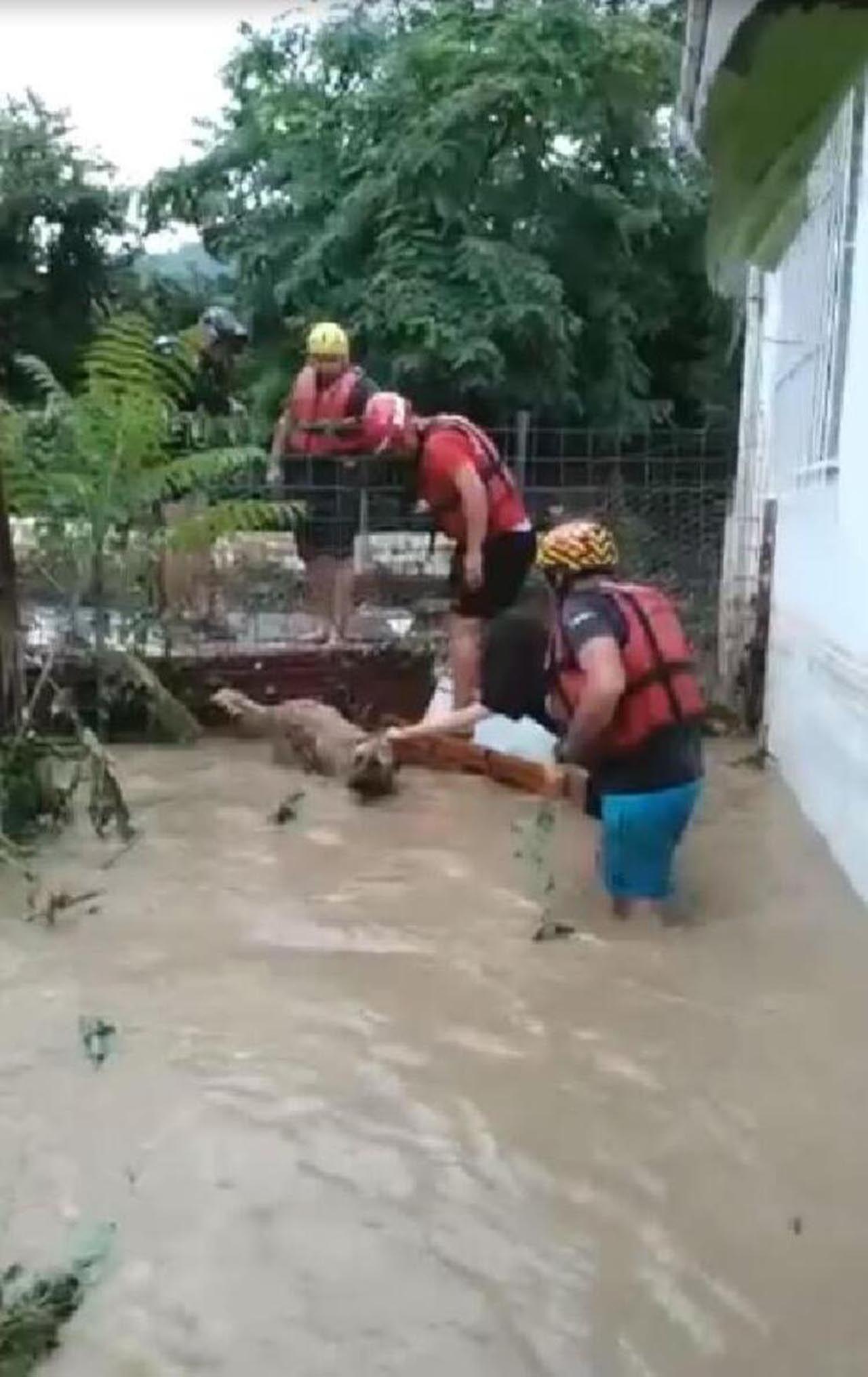 Artvin'deki sel felaketinden yeni görüntü! Gözyaşlarına boğuldu - Resim: 1
