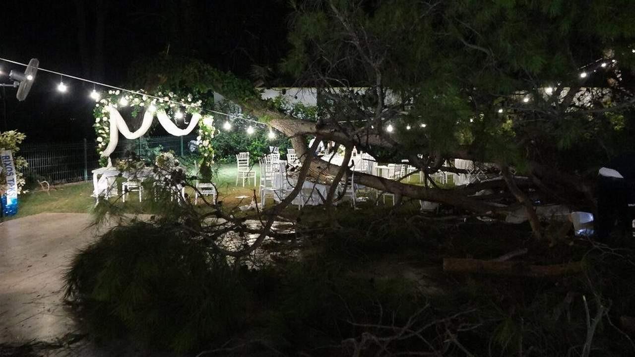 Kır düğününde korkunç olay: 1 ölü, 9 yaralı!