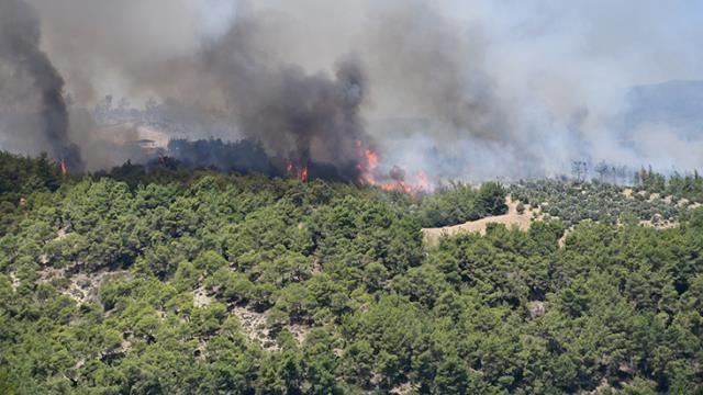 Güzel haberler geldi: 4 ilde orman yangınları kontrol altına alındı - Resim: 1